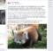 Foto: Screenshot Facebook Zoo Salzburg