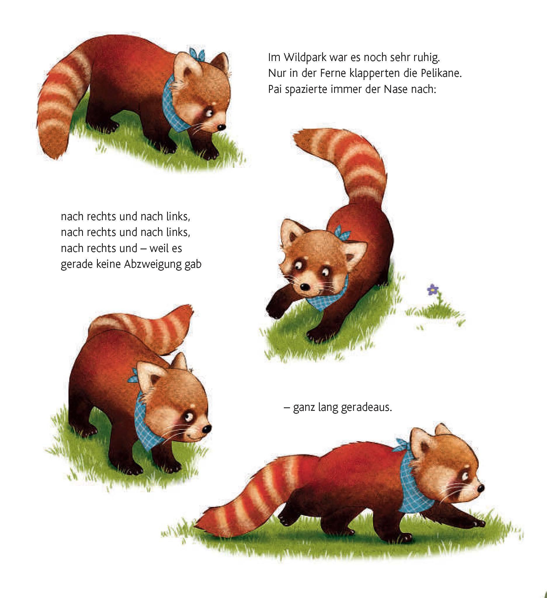 Kleiner Panda Pai Leseprobe Text Saskia Hula Illustration Kerstin Schoene Copyright Loewe Verlag Bindlach 2016