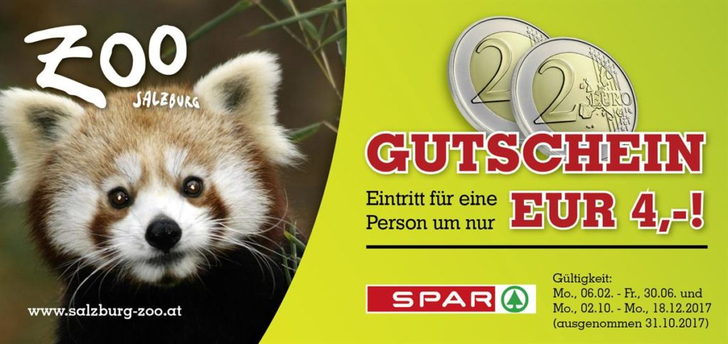 zoo salzburg frühjahrsaktion roter panda