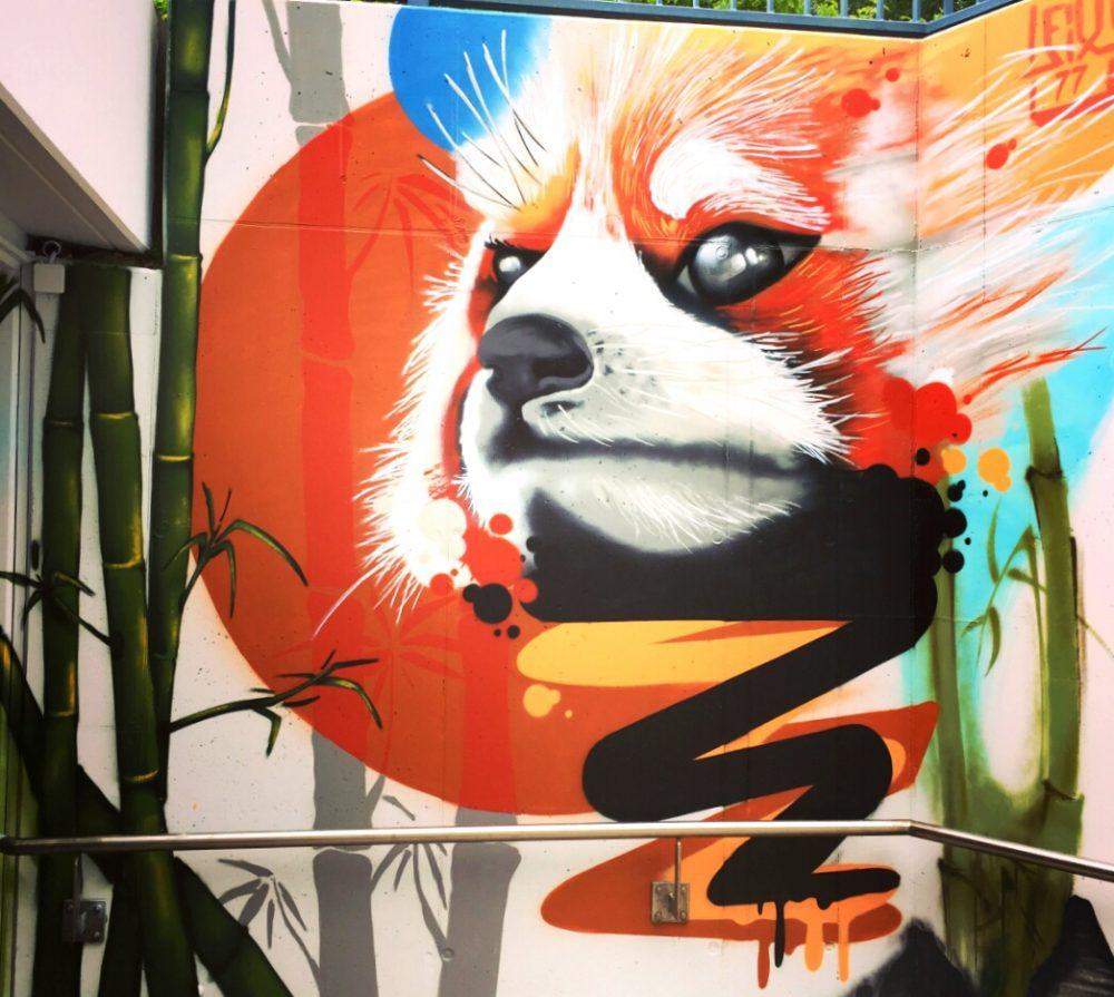 roter panda graffiti brandenburg