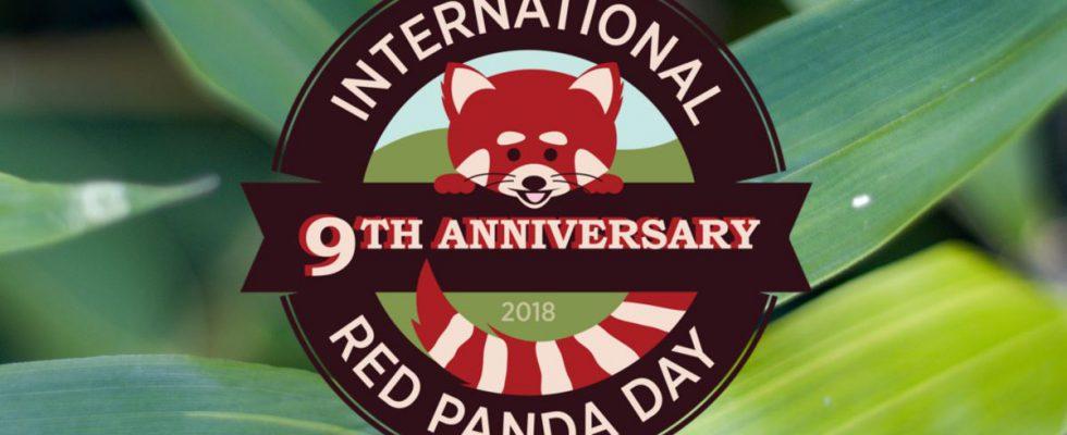international red panda day 2018